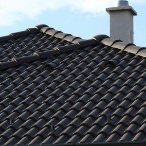 Strecha s betónovou strešnou krytinou T Terran Danubia EVO Carbon