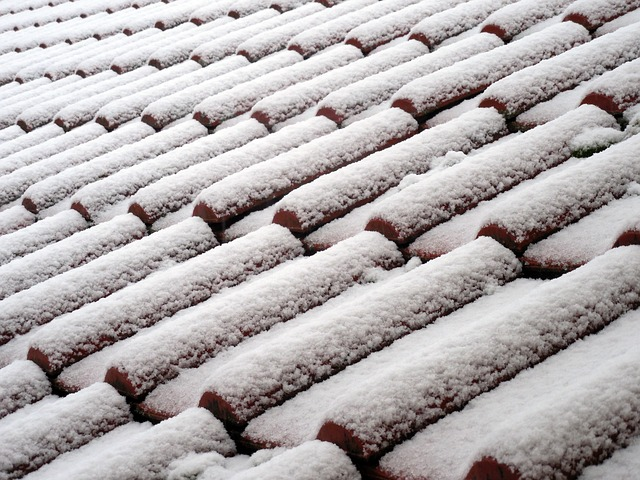 stresna krytina pokryta snehom